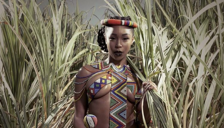 Izithakazelo zakwa Dlamini – clan names